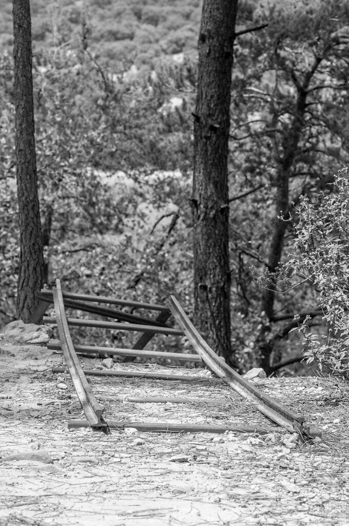 Des rails en pleine forêt