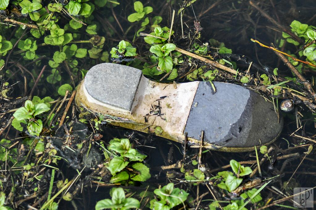 Une chaussure s'est noyée
