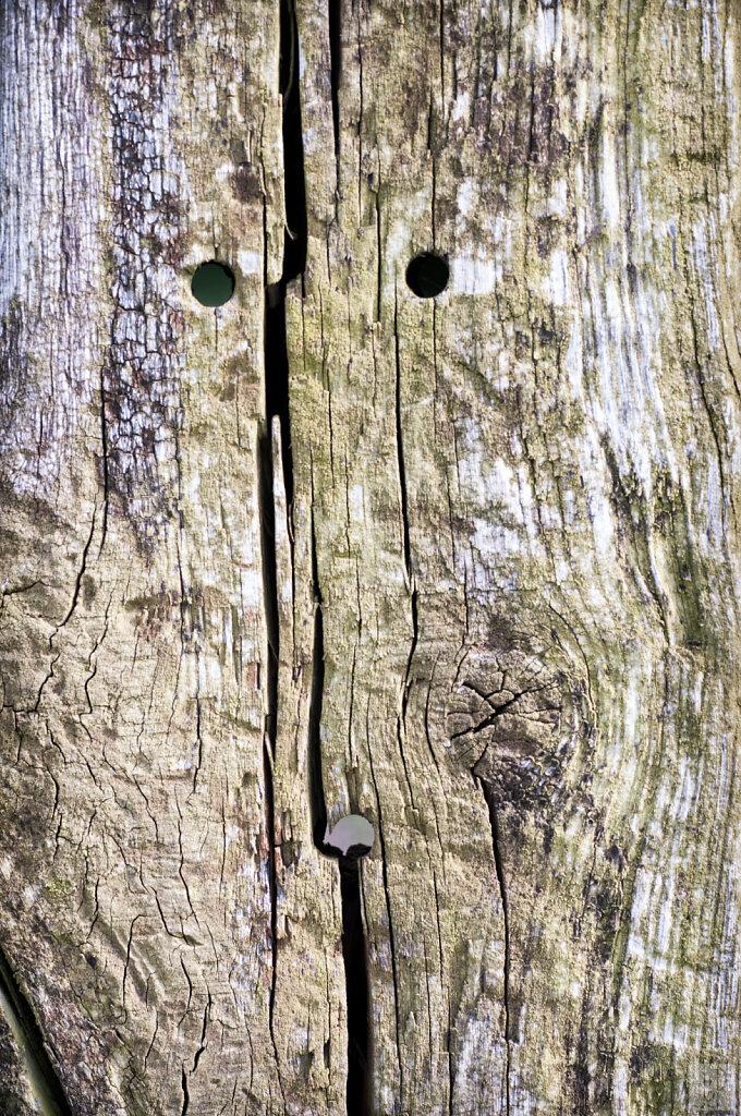 Visage de bois